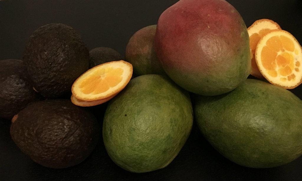 Recept-Mango-och-avokado-smoothie-1